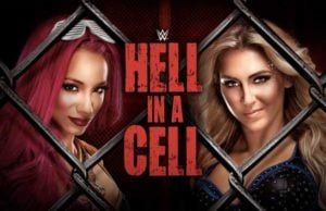 hell-in-a-cell